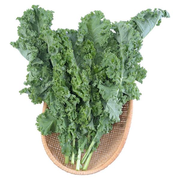Cải Kale Organic Food King 250G