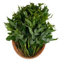 Đọt Rau Lang Organic Vinamit 300G